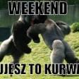 weekend-czujesz-to-kurwa-pl-000000