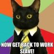 catslave