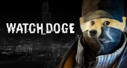 Aidan Doge...