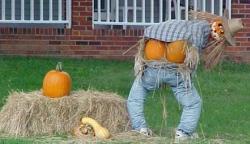 Halloween-Photos-Funny-2