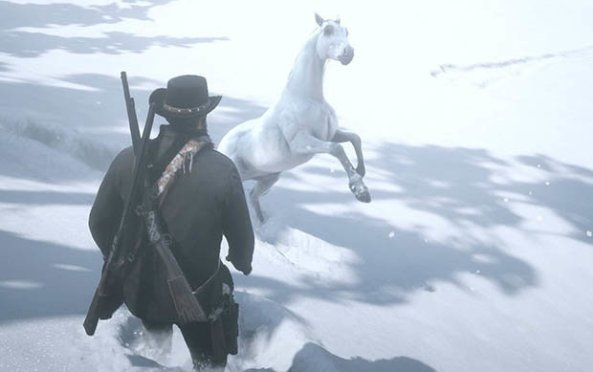 Najlepszy koń za friko...