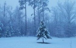 Zima wróciła!